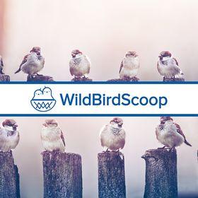 Wild Bird Scoop (*v*)