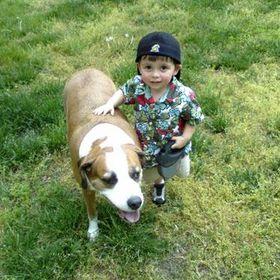 Walkin'-n-Waggin' Dog Walking & Pet Sitting Service