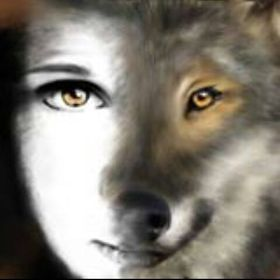 Wolf Moni