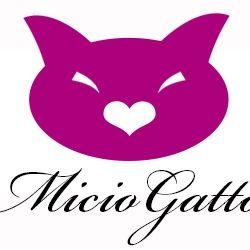 MicioGatto.it