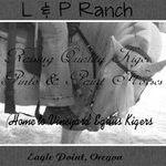 Lnp Ranch