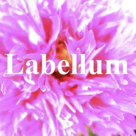 Labellum