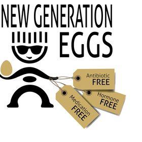 New Generation Eggs
