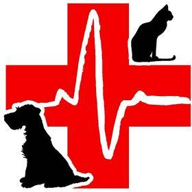 Lakeview Animal Hospital