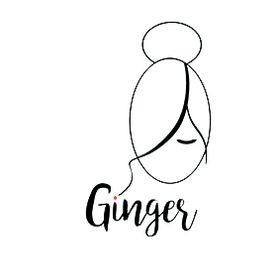 Ginger Consultoria