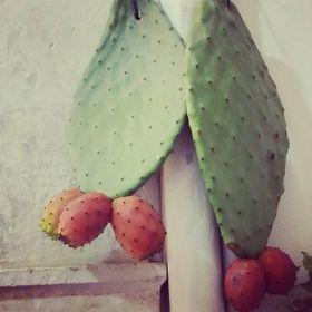 cactus + olives