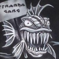 Pirana Piranha