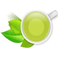 Terapia Verde