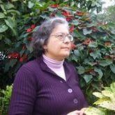 Teresa Tomé