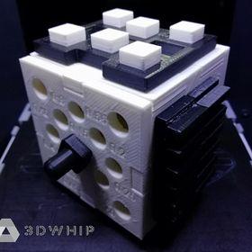 3D Whip