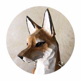 The Fox Chronicles