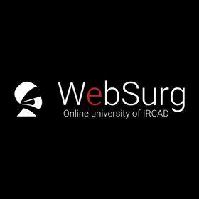 WebSurg