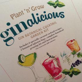 Plant-n-Grow