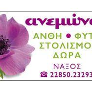 Anemona FlowerShop Naxos