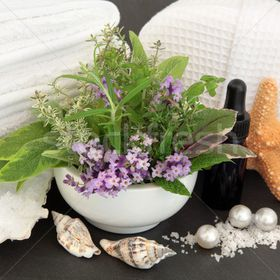 Judit Beauty Biokozmetika