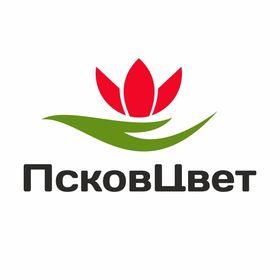 Pskovcvet