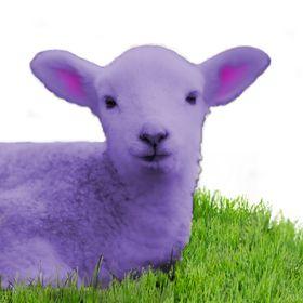 Purple Lamb Fiber Arts