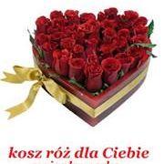 Kwiaciarnia Oliwia Kołobrzeg