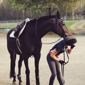 equestrian bernadett