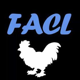 Fight Against Chicken Legs