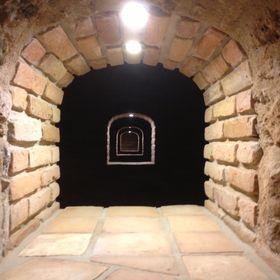 Wine Cellar Dodo Černý