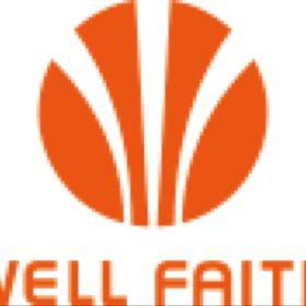 Shenzhen Wellfaith Electronic & Technology Ltd.