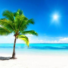 Endless Summer Life