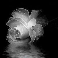 Rose Jongoma