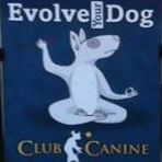 Club Canine ~ Home of The Thinking Dog System