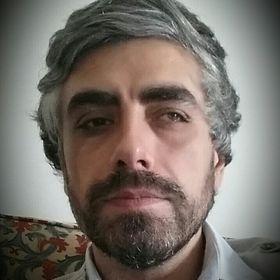 Renato P. M. Simões