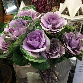 B&C Hillsborough Florist, LLC.