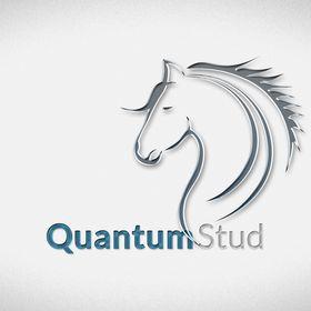 Quantum Stud
