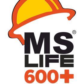 MSLife steel
