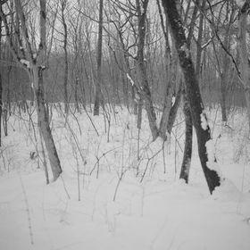 Naoto Kimura Photography