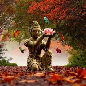 Vedic Healing