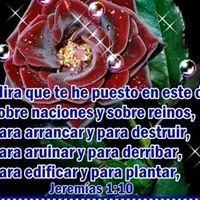 MCristina Quintal