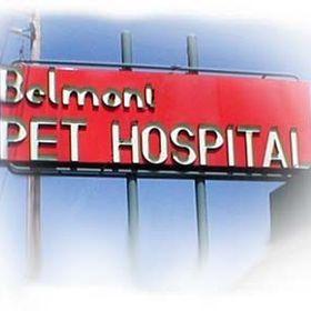 Belmont Pet Hospital