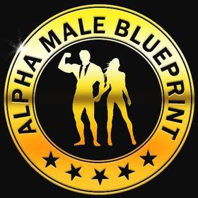 Alpha Male Blueprint