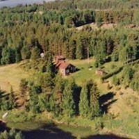 Eila Petäjäjärvi
