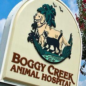 Boggy Creek Animal Hospital