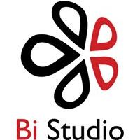 Web BiStudio