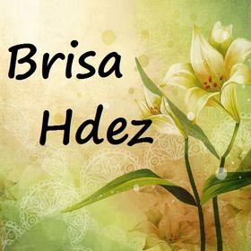 Brisa Hdez