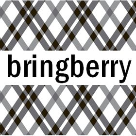 bringberry Handbag Hardware and Designs
