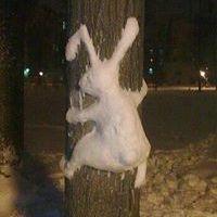 Snow Bump