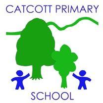 Catcott School