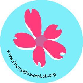 Cherry Blossom Lab