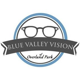 Blue Valley Vision