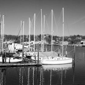 Long-Island-Portal