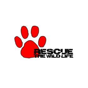 Rescue The Wildlife