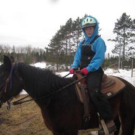 horse Crestik